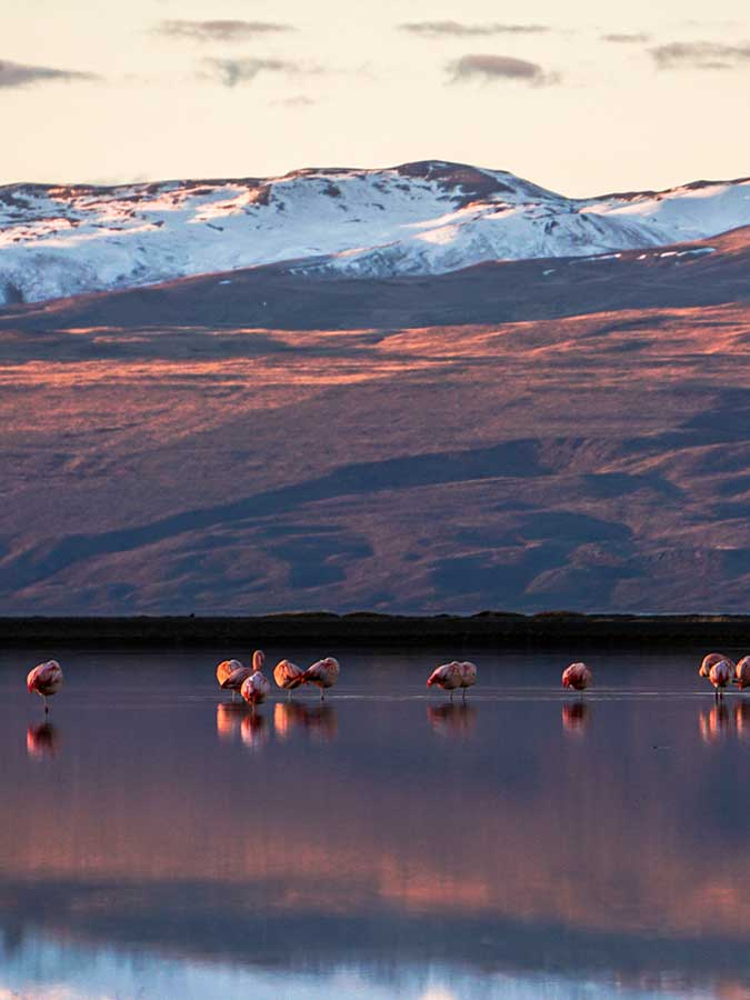 Travel to Southern Patagonia